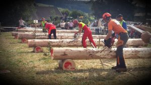 Waelti-SA-Feteforetne-concours-bucheronnage-forestier-2016
